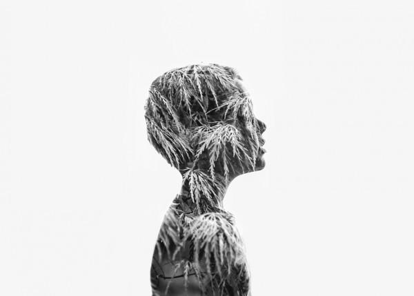 """3 место: """"Двойственность"""", Карен Осдьек, США"""