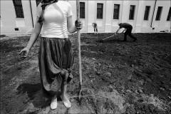 Про «рабов презренных»