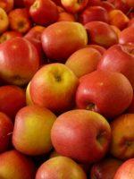 Яблочный спас. Стихи