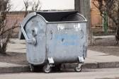 В Челябинске прохожие спасли младенца, брошенного в мусорный бак