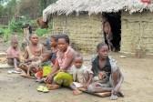 Более полусотни христиан стали жертвами массовой резни в Конго