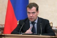 Медведев поддержал концепцию ранней помощи детям-инвалидам