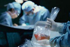 В Нидерландах одобрили законопроект о всеобщем посмертном донорстве органов