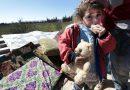 Сирийские дети помолятся о погибших на войне сверстниках