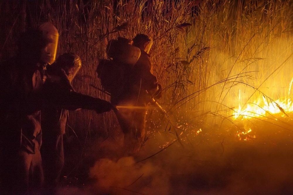 Пожар в Черновских плавнях