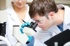 Канадские ученые выяснили, как раковые клетки обманывают иммунную систему