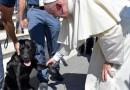 Папа Римский пожал лапу псу, спасшему девочку из-под завалов в Италии