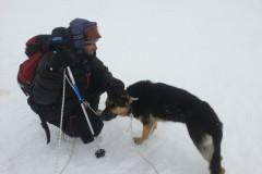 Турист из Москвы спас замерзавшую на вершине Эльбруса собаку