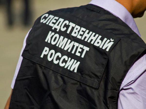 В Карелии расследуют похищение детей, изъятых у россиянки в Финляндии