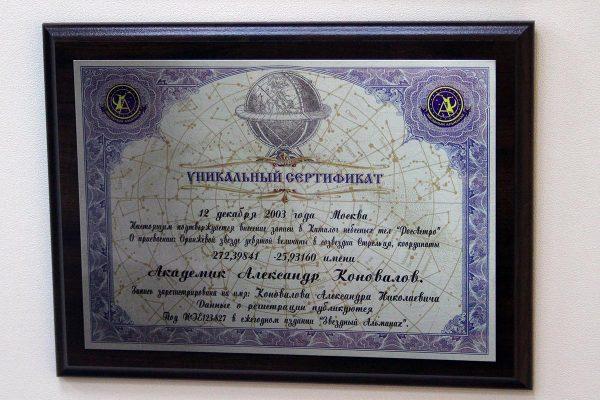 akademik-konovalov-16