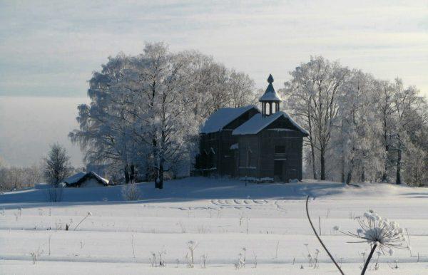 foto-zimoy