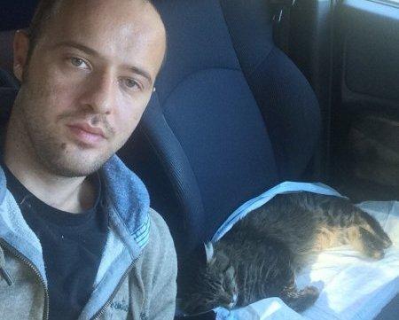 Житель Ростова написал рассказ от имени спасенного им кота Васи