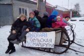 Жители омского села запустили «маршрутную» лошадь