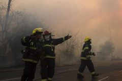 В Израиле задержаны подозреваемые в массовых поджогах