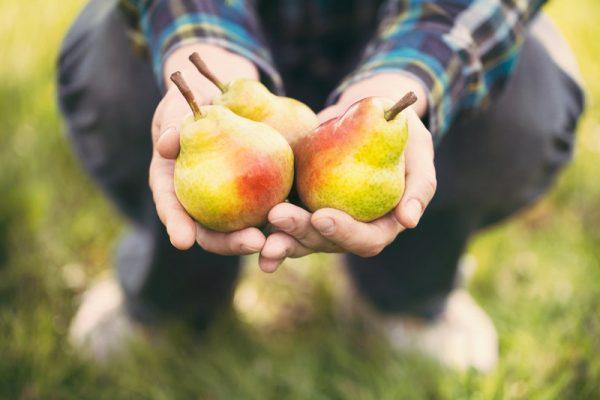 Щедрость – нечаянный дар
