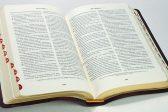 Владивостокский суд постановил уничтожить Библию и Евангелие