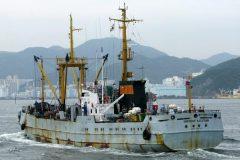 Экипаж российского судна объявил забастовку в Амстердаме