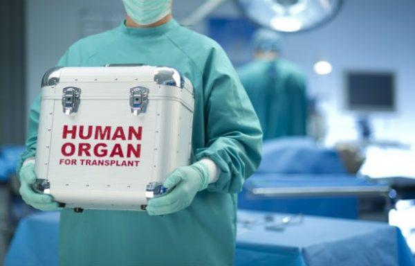 Россиянам разрешат отказаться от посмертного донорства