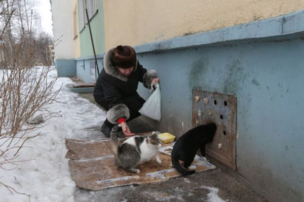 Фото: vse42.ru