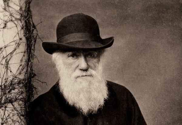 ВТурции теорию Дарвина убрали изшкольной программы