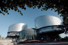 ЕСПЧ признал неправомерным «закон Димы Яковлева»