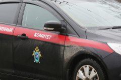 В Воронежской области водитель автобуса высадил девочку в мороз в чужом городе