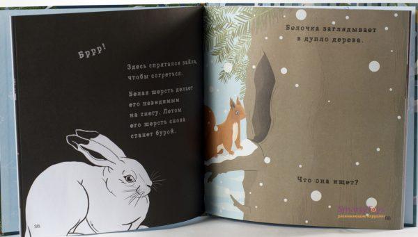 Страницы книги «Что скрывает зима»
