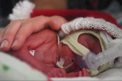 Колядка из Торонто для недоношенных младенцев (+видео)