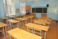 Директор подмосковной школы отстранен после сообщений об издевательствах над детьми