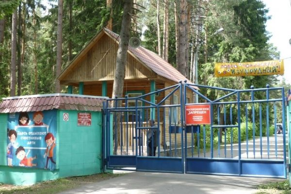 Детские лагеря обяжут получать образовательные лицензии