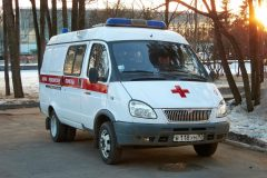 Москвич спас мужчину, тонувшего в пруду