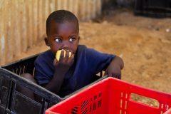 ВОЗ: каждый четвертый ребенок умирает из-за проблем с экологией