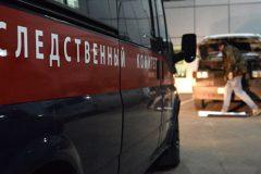 СК расследует убийство двух детей-инвалидов опекунами в Кемеровской области