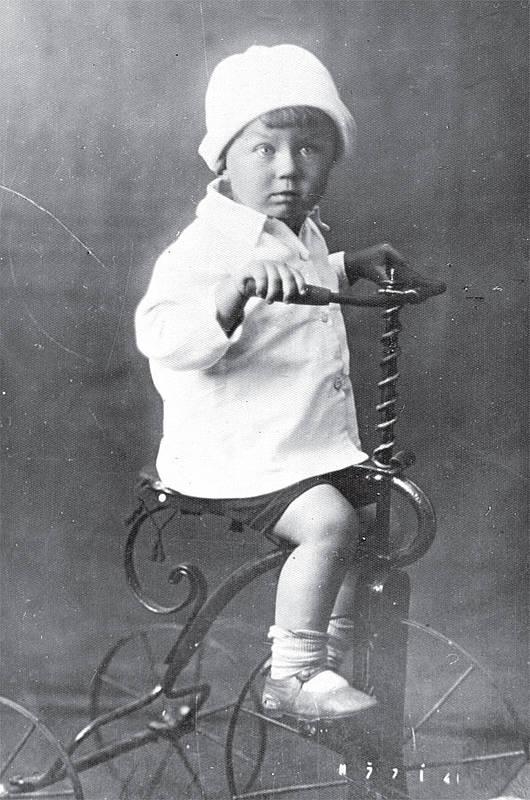 Картинка из детства евтушенко