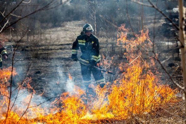 В Сибири введен режим чрезвычайной ситуации в связи с пожарами