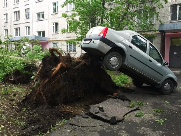 Шесть человек погибли при урагане в Москве