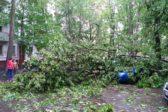 Число жертв урагана в Москве возросло до одиннадцати