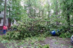 Число жертв урагана в Москве возросло