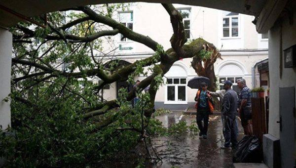 Более 100 человек остаются в больницах Москвы после урагана