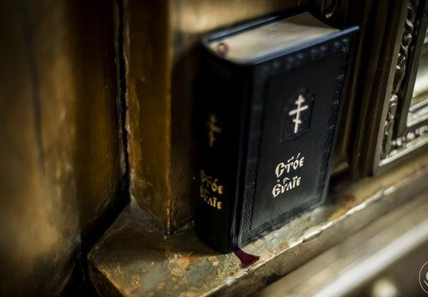 Забытая Библия: если бы книга умела говорить