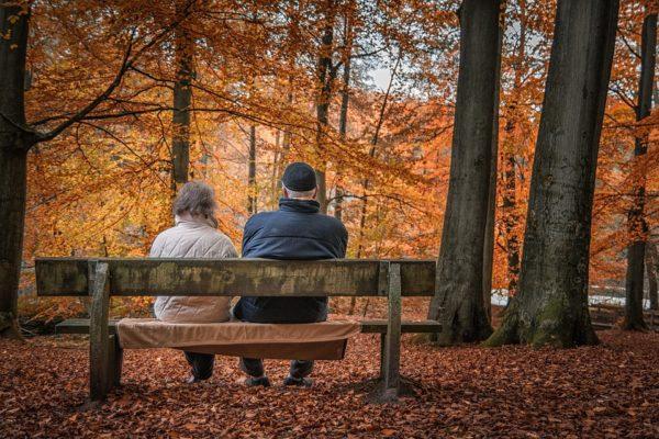 autumn-1791854_960_720
