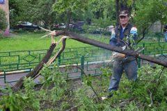 В МЧС нашли виновного в отсутствии СМС-оповещений об урагане в Москве