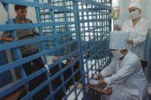 Тяжелобольных будут отпускать из мест лишения свободы за три дня