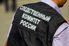 Челябинский СК попросил родителей усилить контроль за детьми