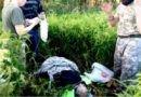 Грибник спас три дня блуждавшую по лесу кировскую пенсионерку