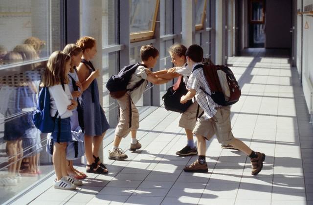 В престижных школах детей травят больше