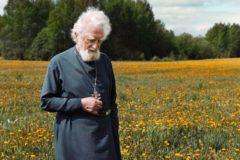 Протоиерей Георгий Эдельштейн: Если мы честно идем к Господу – наш путь правильный