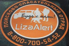 «Лиза Алерт»: спасибо всем, кто услышал