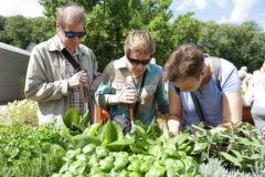 Первый в России сенсорный сад открылся в Москве (+фото)
