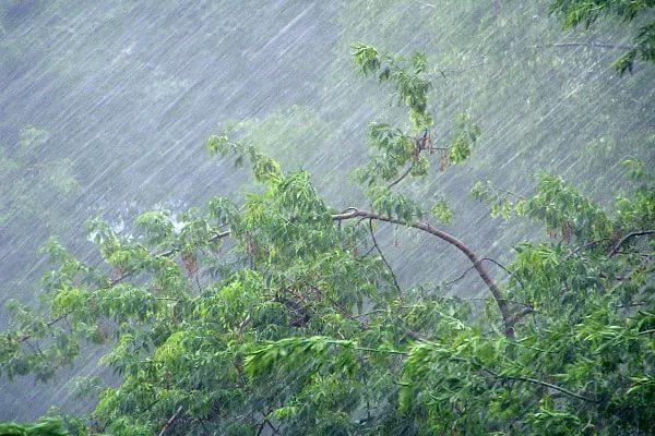 В Москве в понедельник ожидается гроза и сильные порывы ветра